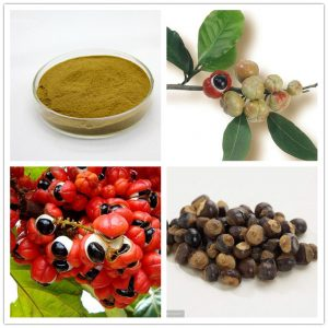 Guarana(Guaraná) seed extract
