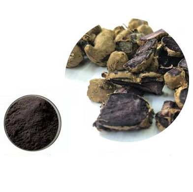 Black Ginger Extract-EverforEverBio